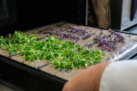 Basque Culinary Center potencia a cocineros que innovan con el producto local