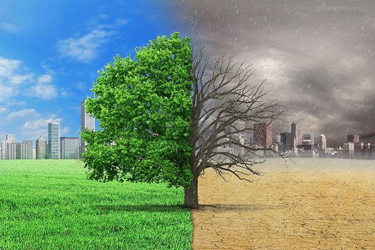 LABORAL Kutxada un paso más en su compromiso con la sostenibilidad