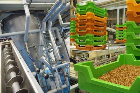 ULMA Handling Systems desarrolla la primera instalación automatizada de producción de insectos