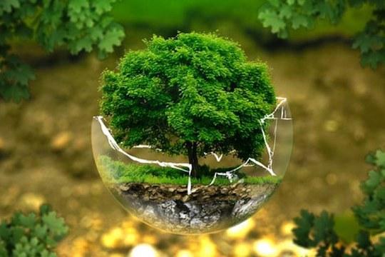 Ekonomiaren berreraikuntza ekologikoaren alde