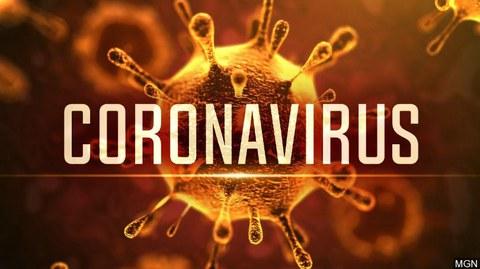 Koronabirusak eragindako osasun-larrialdia