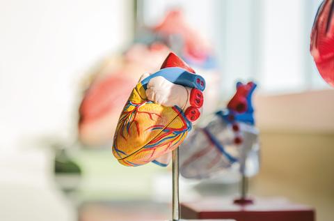 Leartikerrek miokardio-infartua tratatzeko soluzioak garatzen duen proiektuan hartzen du parte